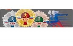 Анкета по теме ВФСК «Готов к труду и обороне» (ГТО)